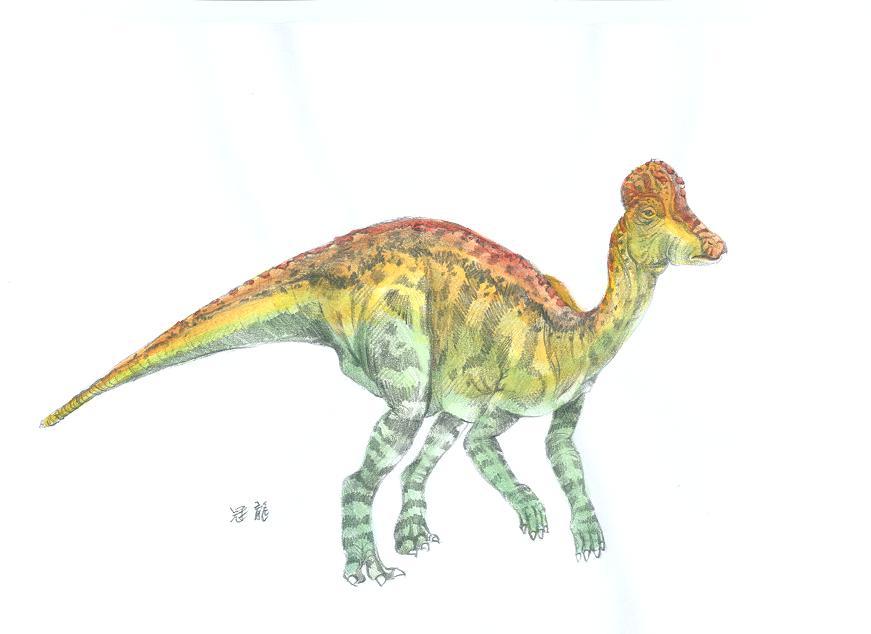 铁丝制作的恐龙骨架3d模型展示