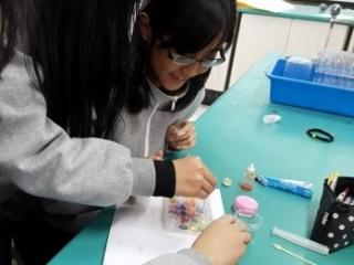 12化學探究課程,嘗試找實驗條件(七彩幻彩珠)